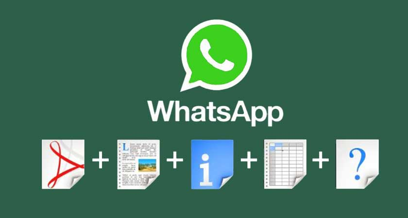 siliconreview WhatsApp all new update allows users share any type of files