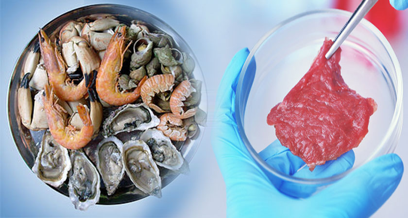 Sea food replacement to be next big thing in alternative proteins