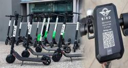 siliconreview-bird-custom-electric-scooter-delivery