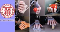 siliconreview-cornell-university-prosthetic-limbs