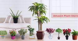 siliconreview-amazon-launches-plants-store