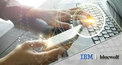 siliconreview-ibm-brings-salesforce-partner-bluewolf-to-india