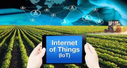 siliconreview-iot-goldmine-waiting-to-be-tapped-by-nz-agriculture-sector