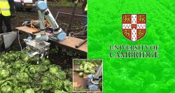 siliconreview-lettuce-picking-robot-