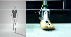 siliconreview-prosthetic-ankle-can-adjust-to-rough-terrains