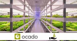 siliconreview-ocado-17-million-pounds-investment-