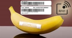 siliconreview-rfid-stickers-could-signal-contaminated-food