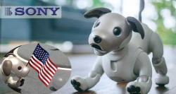 siliconreview-robot-dog-in-the-us